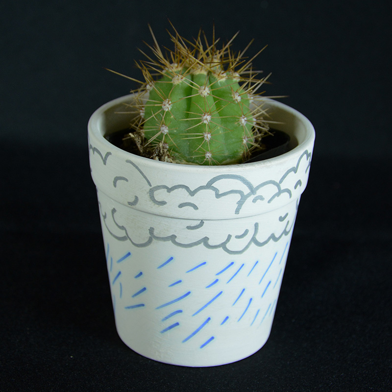 decorate your own cactus